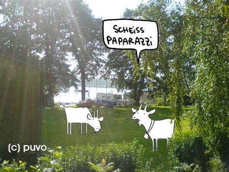 Paddelurlaub mit Faltboot - Collage von puvo productions