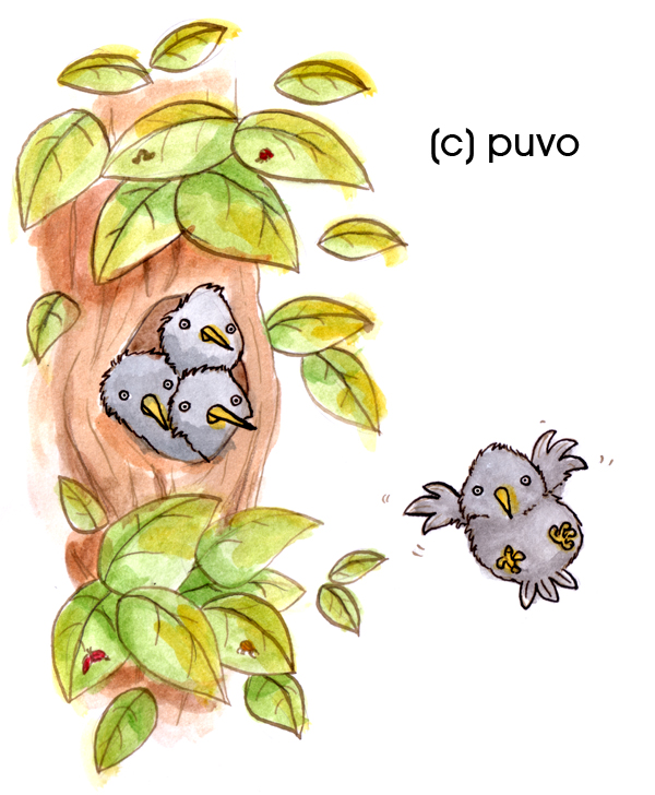 Starenkinder, Illustration von puvo productions.