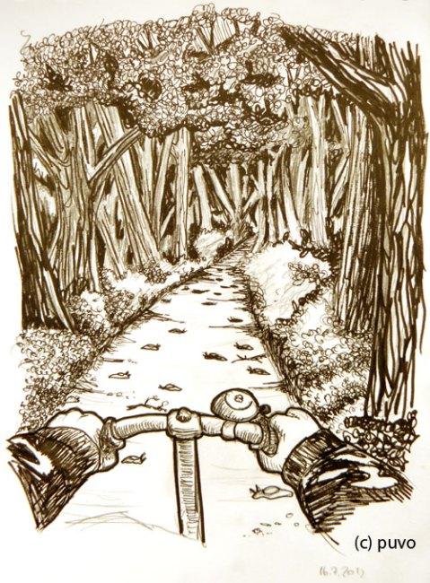 Nacktschnecken im Wald. Illustration von puvo productions.