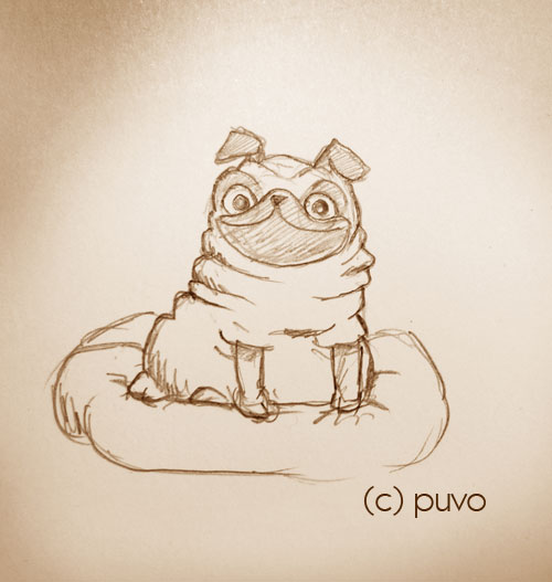 Mops. Studie von puvo productions