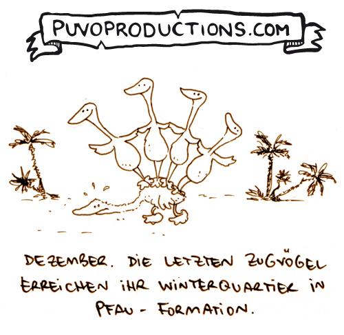 Pfauformation.