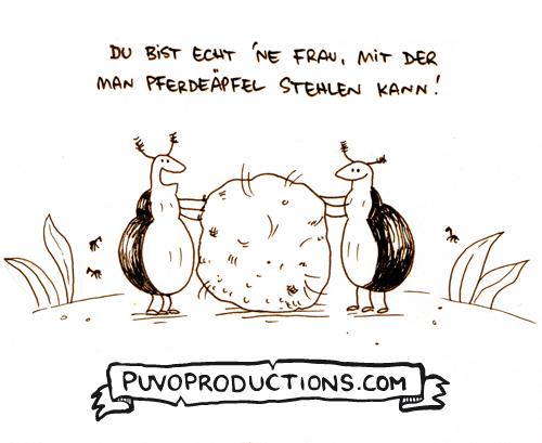 Pferdeäpfel.